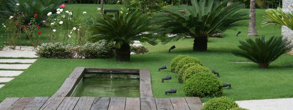 Eduvera jardins servi os de jardinagem e paisagismo for Paisagismo e jardinagem